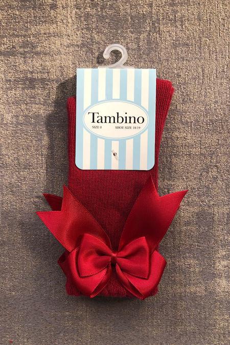 Tambino burgundy knee high socks
